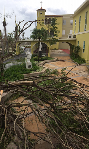 The statues of Blessed Chaminade and Our Lady somehow escaped damage from Hurricane Maria at Colegio San Jose.